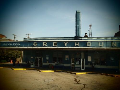 Greyhount