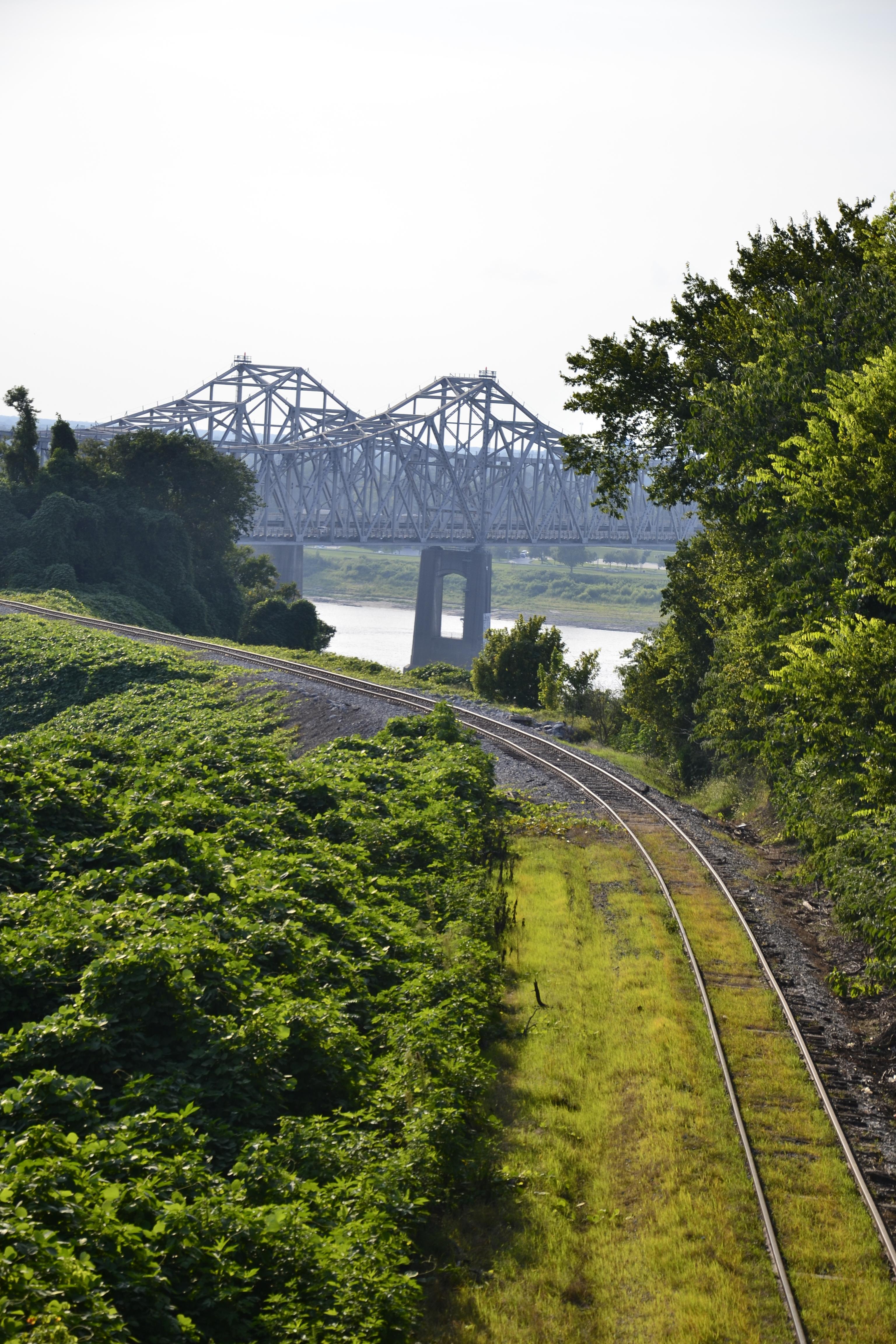Scorcio del Fiume Mississippi