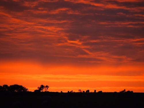 Il tramonto del Devon