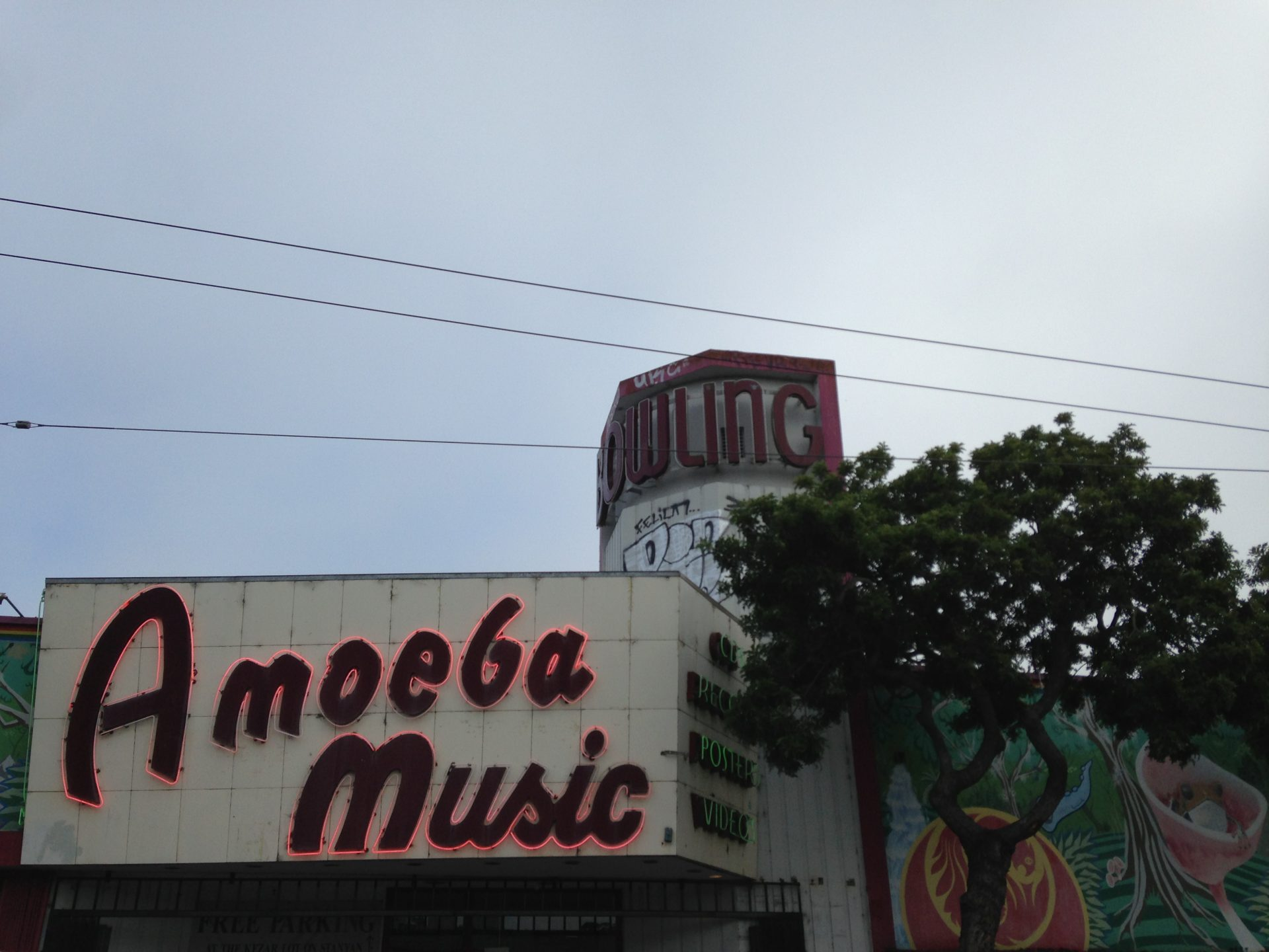 Amoeba in San Francisco ph Gloria