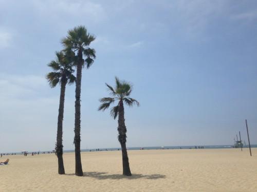 La spiaggia di Venice