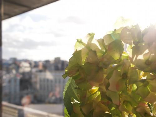 Terrazzo, particolare, foto di Gloria