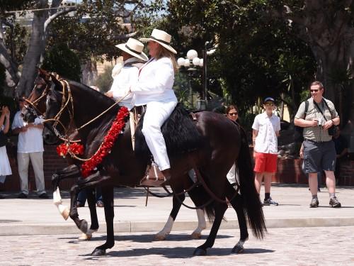 Parata messicana, foto di Gloria