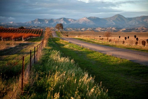 Santa Ynez Valley, credit www.careykendall.com
