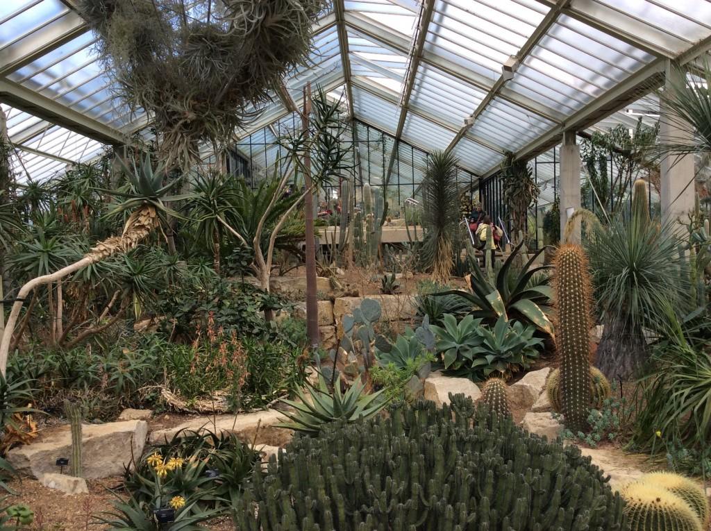 Tra i fiori di Kew