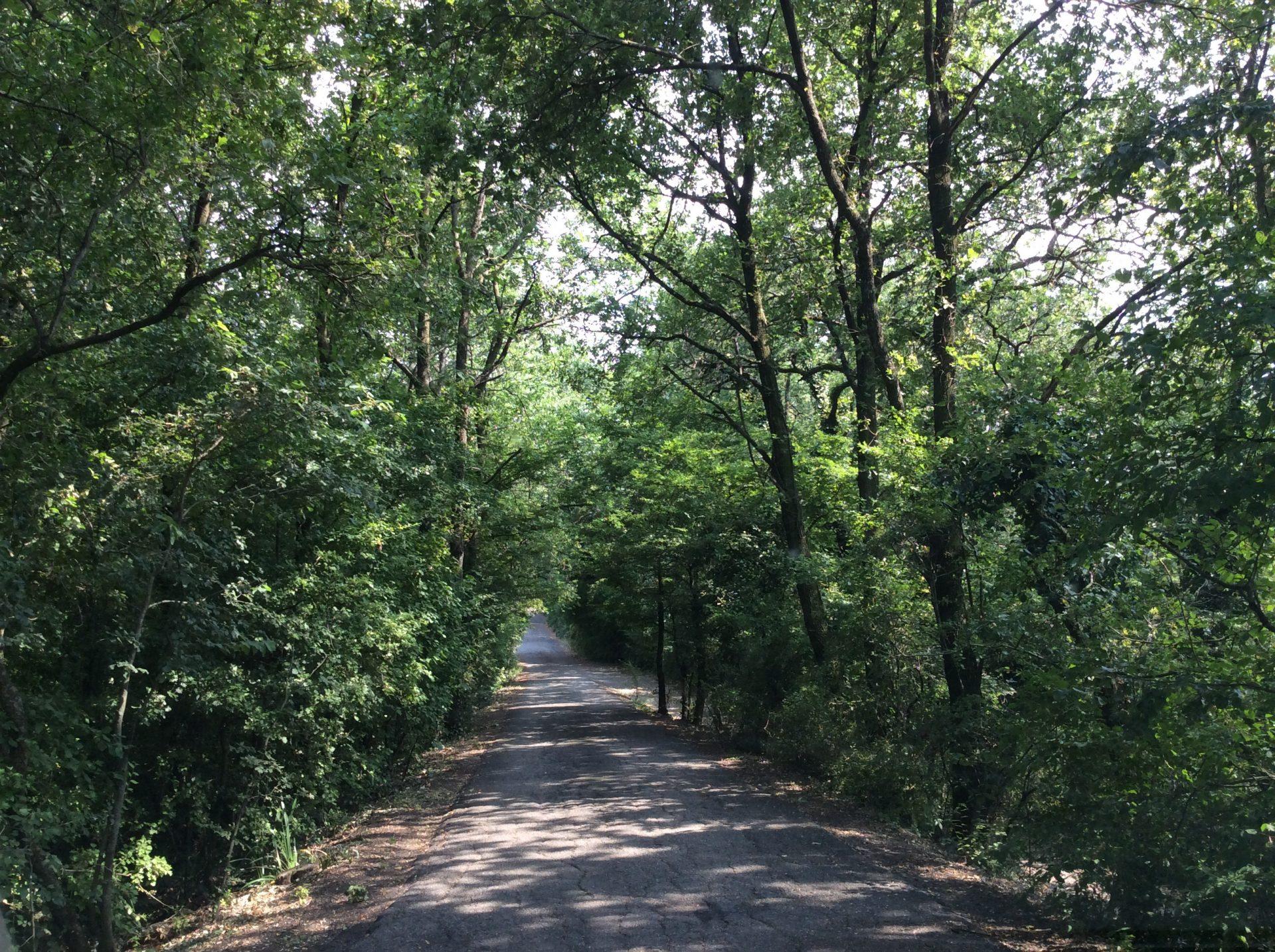 La strada che porta al cimitero