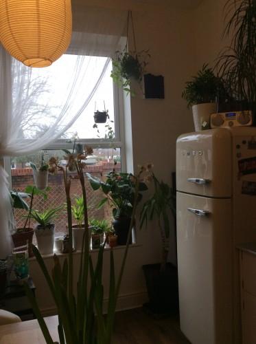 La cucina, foto di Gloria