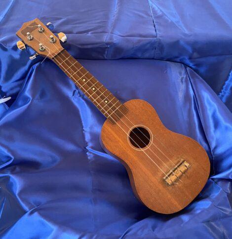 ukulele rino