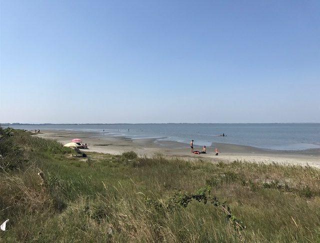 boschettona spiaggia